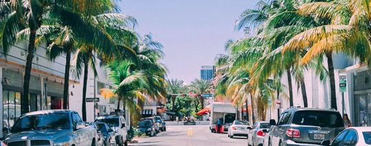 Top Places Where You Could Play Roulette in Florida